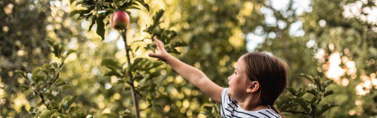 Girl Reaching for Apple
